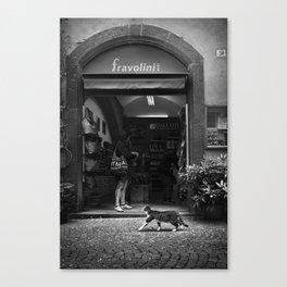 Shopping Cat in Orvieto Canvas Print