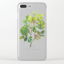 Greenery By Water Clear iPhone Case