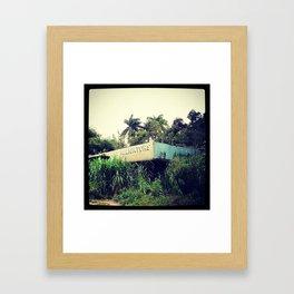 Live Alligators Framed Art Print