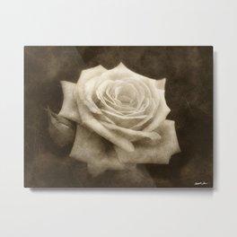 Pink Roses in Anzures 4 Antiqued Metal Print