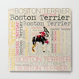 Adorable Boston Terrier Metal Print