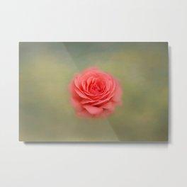Rose Impressions Metal Print
