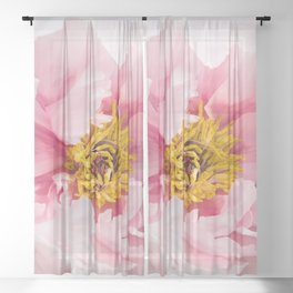 Pink Peony | Flower Photography |  Pink Floral | Botanical | Flowers | Nature Sheer Curtain