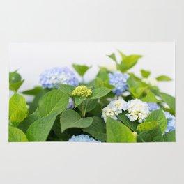 Blooming Hydrangeas Rug