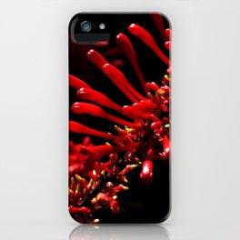 Suivre la nature iPhone Case
