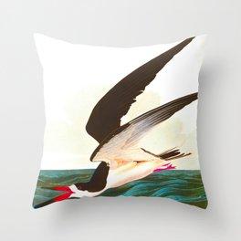 Black Skimmer or Shearwater John James Audubon Vintage Scientific Hand Drawn Illustration Birds Throw Pillow