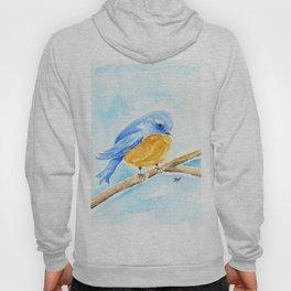 The Chubby Bluebird Hoody