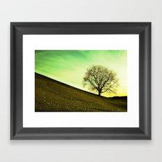 starting spring time Framed Art Print