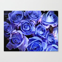 Blue Roses for You Canvas Print