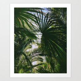IN THE JUNGLE #1 Art Print