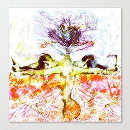 Divided Canvas Print
