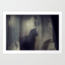 240//365 Art Print