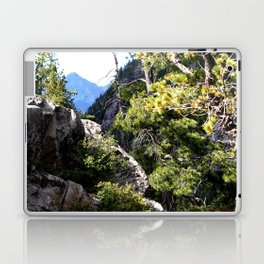 Clinging to the Brink over Vallecito Creek Laptop & iPad Skin