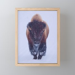 Bison In Snow Framed Mini Art Print