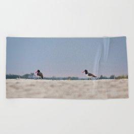 Oyster Catchers Beach Towel