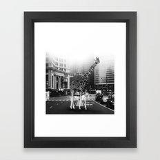 Wallker Road III Framed Art Print