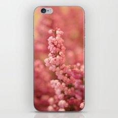 Pink Heather iPhone & iPod Skin
