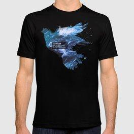 Ravenclaw Nature T-shirt