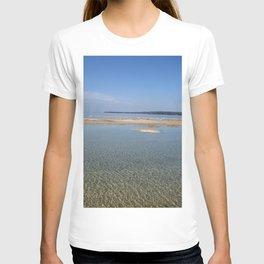 Lake Michigan beach vista T-shirt