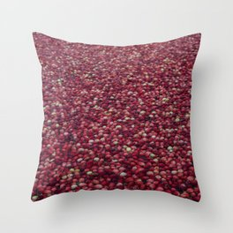 cranberry party Throw Pillow