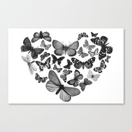 BUTTERFLY LOVE MONO Canvas Print