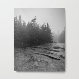 drizzly day Metal Print
