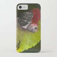 military iPhone & iPod Cases featuring Military Macaw by Maureen Bates Photography