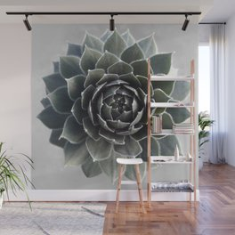 Succulent Photography Nature Plant Green Cactus Floral Art Wall Mural