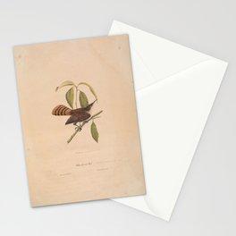 JP Giroud - North American birds (1841) - White-Throated Wren Stationery Cards