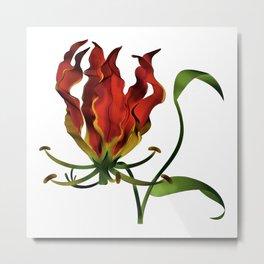 Flame Lily Metal Print