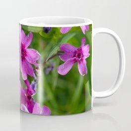 Flowers Izby Garden 6 Coffee Mug