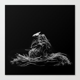 Lettuce root Canvas Print