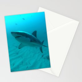 Great white shark, Carcharodon carcharias Stationery Cards