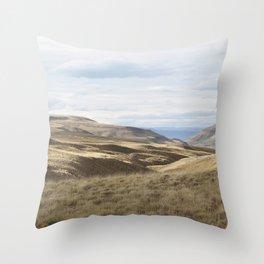 South Landscape Throw Pillow