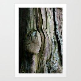 Old Tree in Japan - Detail of Wood - Fine Art - Green Botanical Print - Natural Wall Art  Art Print