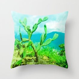 Hostility and coldness. Throw Pillow