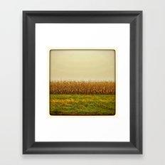 Corn Lines Framed Art Print