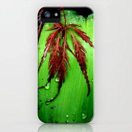 Peaceful Nature iPhone Case