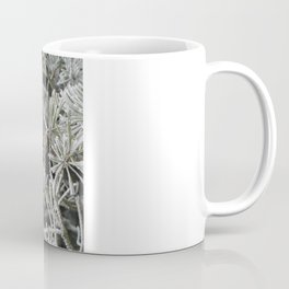 Frosted pine Coffee Mug