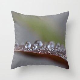 Drop Life Throw Pillow