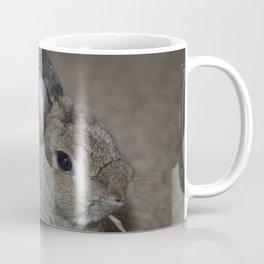 Pumpkin munching on some hay Coffee Mug