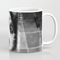 border collie Mugs featuring Tri-coloured border collie. by liamgrantfoto