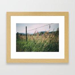 South Dakota Field 2 Framed Art Print