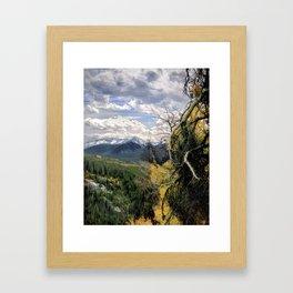 Wilderness Trail Framed Art Print