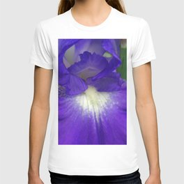 Blue and white Iris detail T-shirt