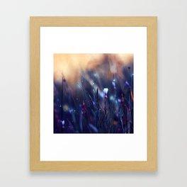 Lonely in Beauty Framed Art Print