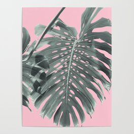 Monstera Finesse #1 #tropical #decor #art #society6 Poster