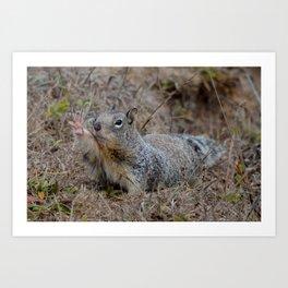 squirrel salute Art Print