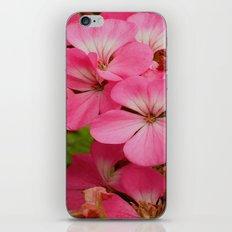 Pink Geranuims iPhone Skin