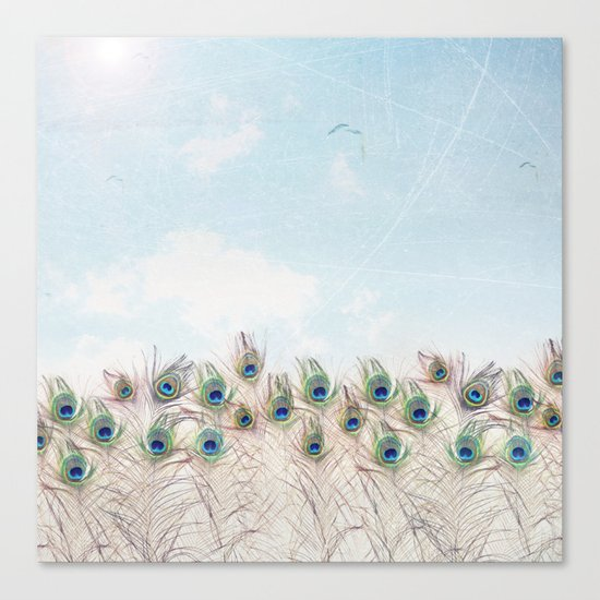 Fly Over A Peacock Field Canvas Print